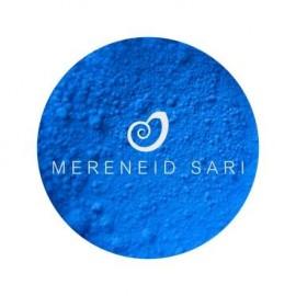 Pigmentas- Neoninis mėlynas 2g
