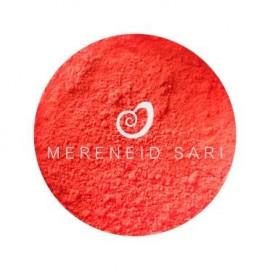 Pigmentas - Neoninis oranžinis 2g